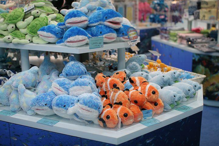 沖縄美ら海水族館のアンテナショップ「うみちゅらら」