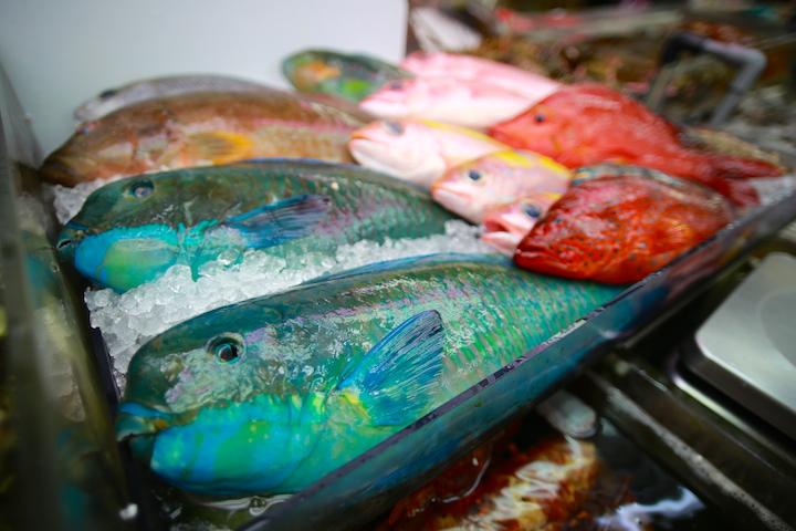 沖縄のカラフルな食材
