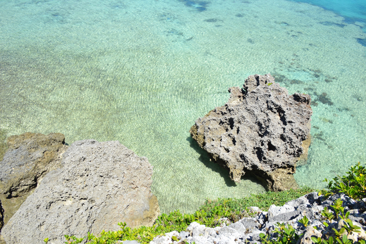 透明度抜群の海にはサンゴが広がり、美しい