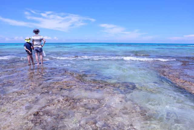 마음까지 만족시켜주는. 흰동가리를 만날 수 있는 구리마 섬의 휴양지 비치