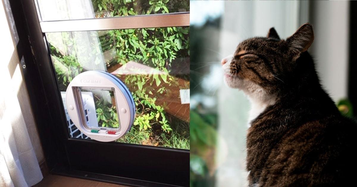 窓ガラスにペット出入り用の「ペットドア」を設置された事例 (千葉県千葉市 I様)のお写真