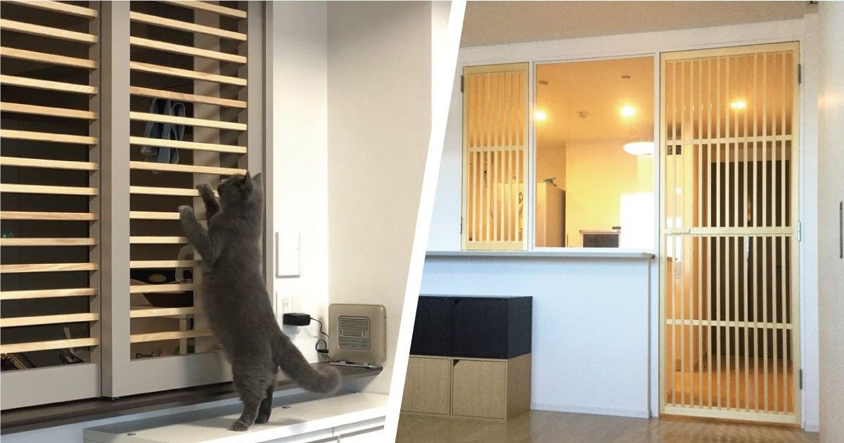 猫の侵入を防ぐためキッチン扉にガラスを使用した事例3選のお写真