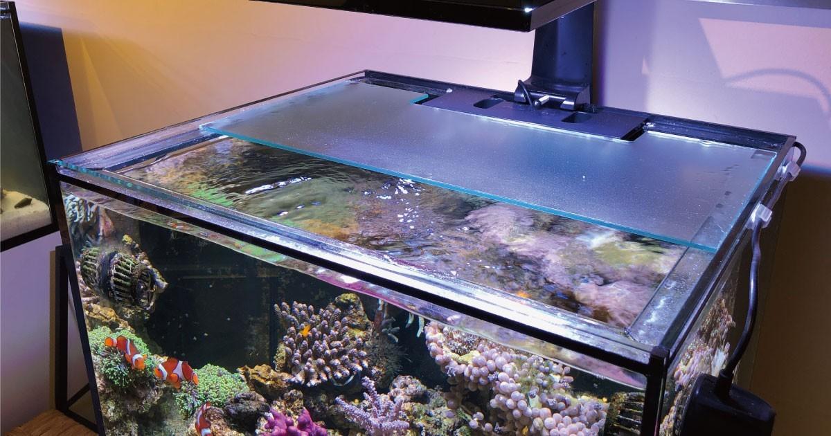 水槽の蓋に「強化フロストガラス」を使用した事例(奈良県K様)のお写真