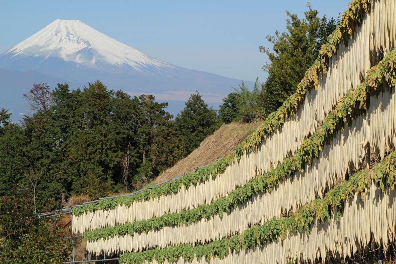自然の恵みがいっぱい! 伊豆の国市の地場産品を味わおう