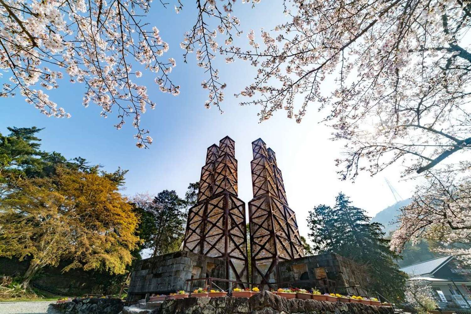 The air is full of spring! Famous spot of cherry tree of Izunokuni-shi where heart softens for quiet scenery