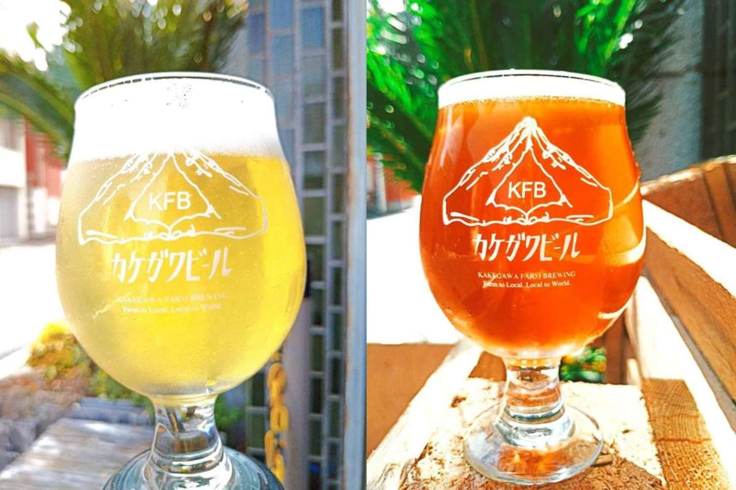 "Craft beer ""Kakegawa beer"" utilized special product of Kakegawa-city is born!"