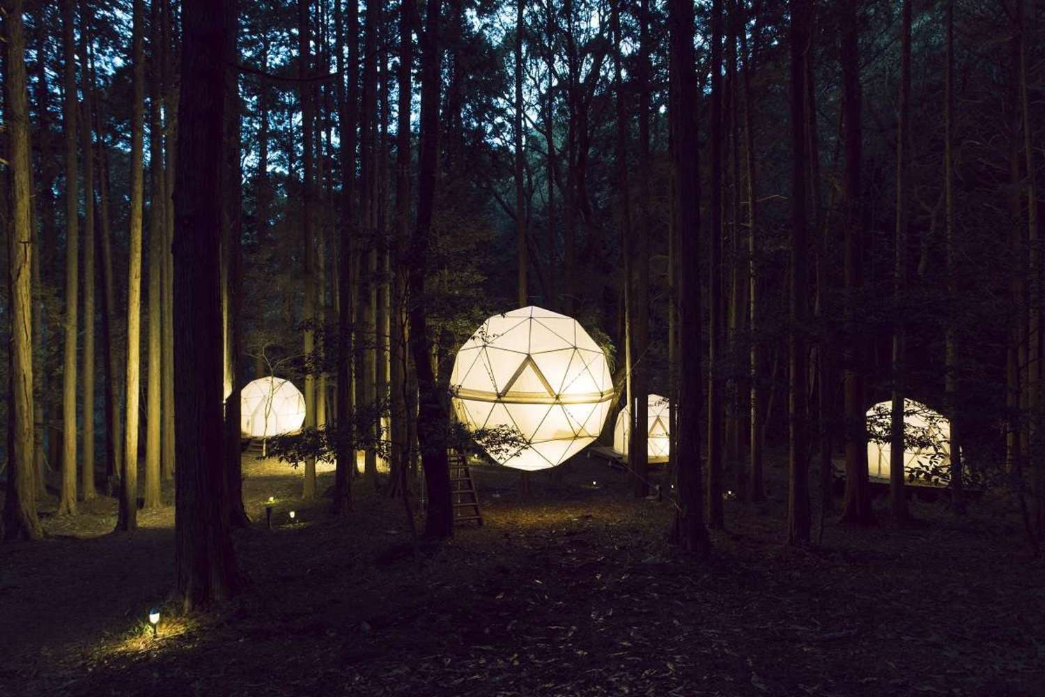 "Globe type tent floating in forest! Park ""INN THE PARK"" to be able to stay"