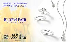 <royal Usher> wedding fair 2020 of spring