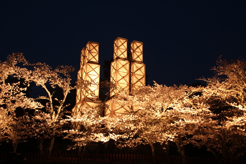 การตกแต่งด้วยไฟสวยงามนิระยะมะ reverberatory furnace going to see cherry blossoms at night และการขยายนิระยะมะ reverberatory furnace เวลาทำการ (ถึง 20 นาฬิกา 0 นาที) การเริ่มชิซุโอะคะดีซีที่ระลึก