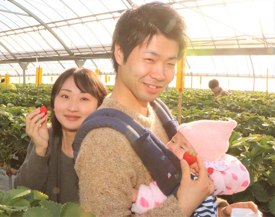 Trung tâm hái dâu Nirayama