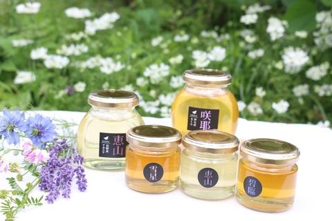 Beehive (beehive)