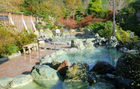 静岡市清水西里温泉浴場 やませみの湯