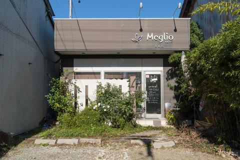 Meg Rio hair Oishi
