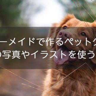 オーダーメイドでペットグッズを作りたい!愛犬の写真やイラストを使うには?
