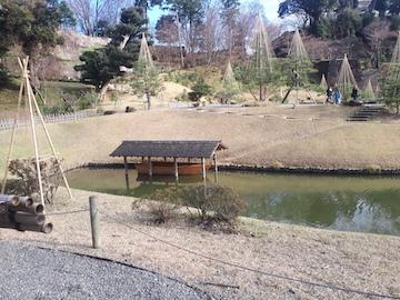 玉泉院丸庭園6