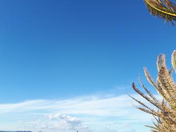 浜名湖ガーデンパーク18