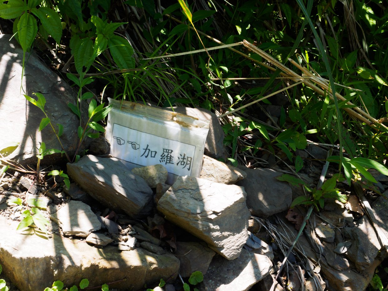 前往加羅湖路上,山友留下的指標