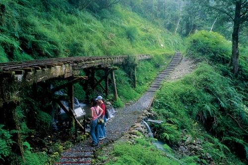 宜蘭小旅行|網美照這樣拍!到宜蘭秘境來個兩天一夜放鬆小旅行