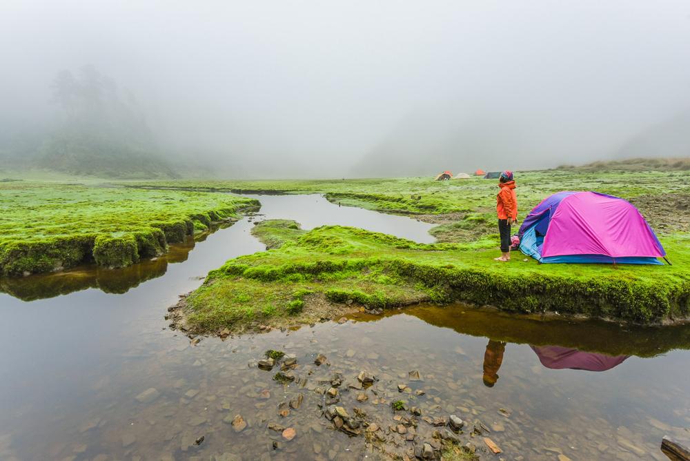 5個你絕不能錯過的全台特色野營|森林、湖畔、無人島野營