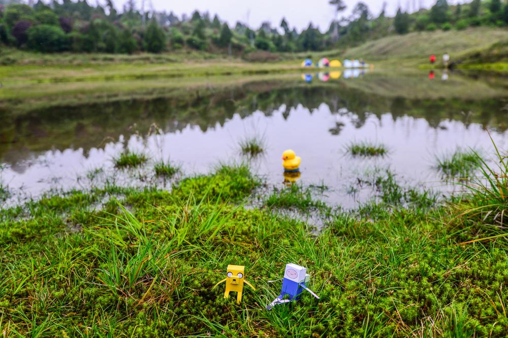 5個你絕不能錯過的全台特色野營 森林、湖畔、無人島野營