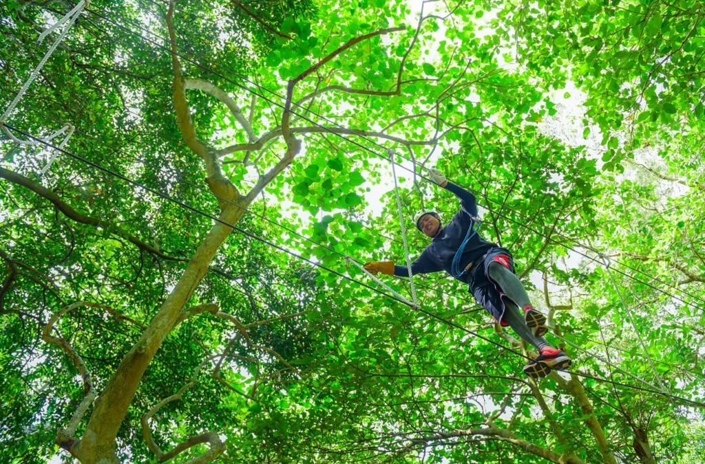 奧丁丁體驗獨家 - 花蓮叢林飛躍