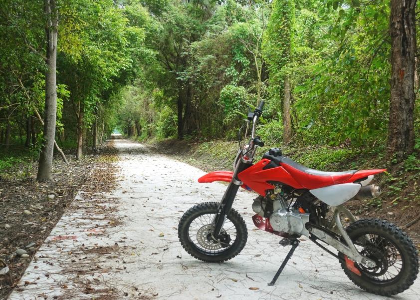 行程途中行經龍貓隧道、森林、西瓜園、花蓮溪、美麗稻田。