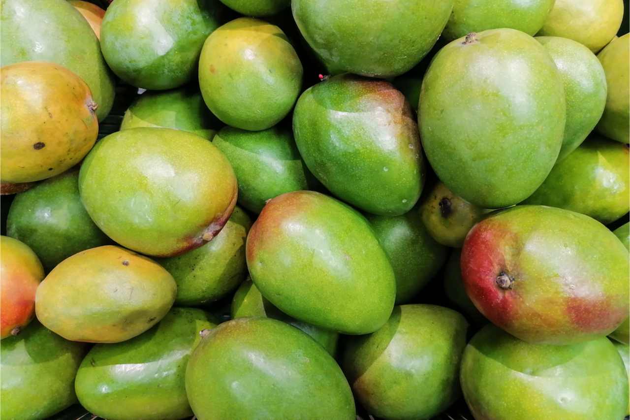 圓圓的芒果可能不好吃?