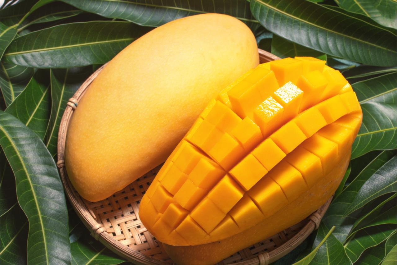 硬硬的芒果蓋好吃!