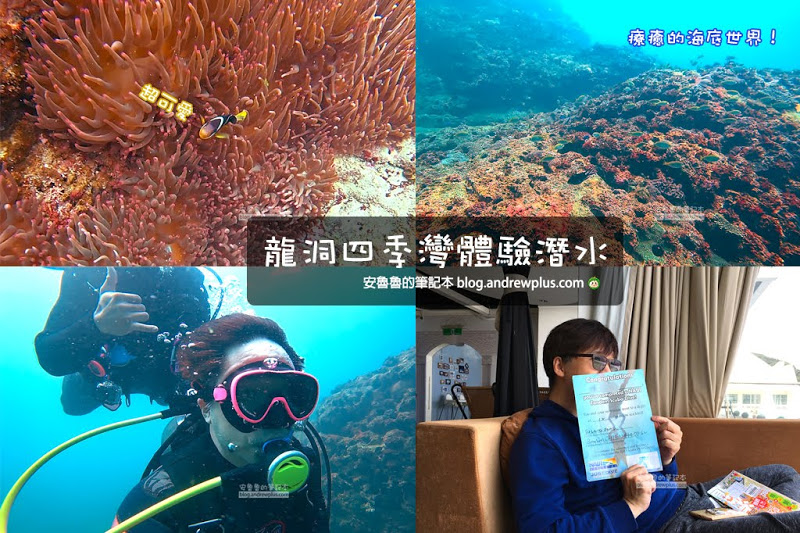 龍洞四季灣體驗潛水,尋找金錢鰻拜訪小丑魚,空手來輕鬆潛水,早上潛水下午喝咖啡愜意舒適