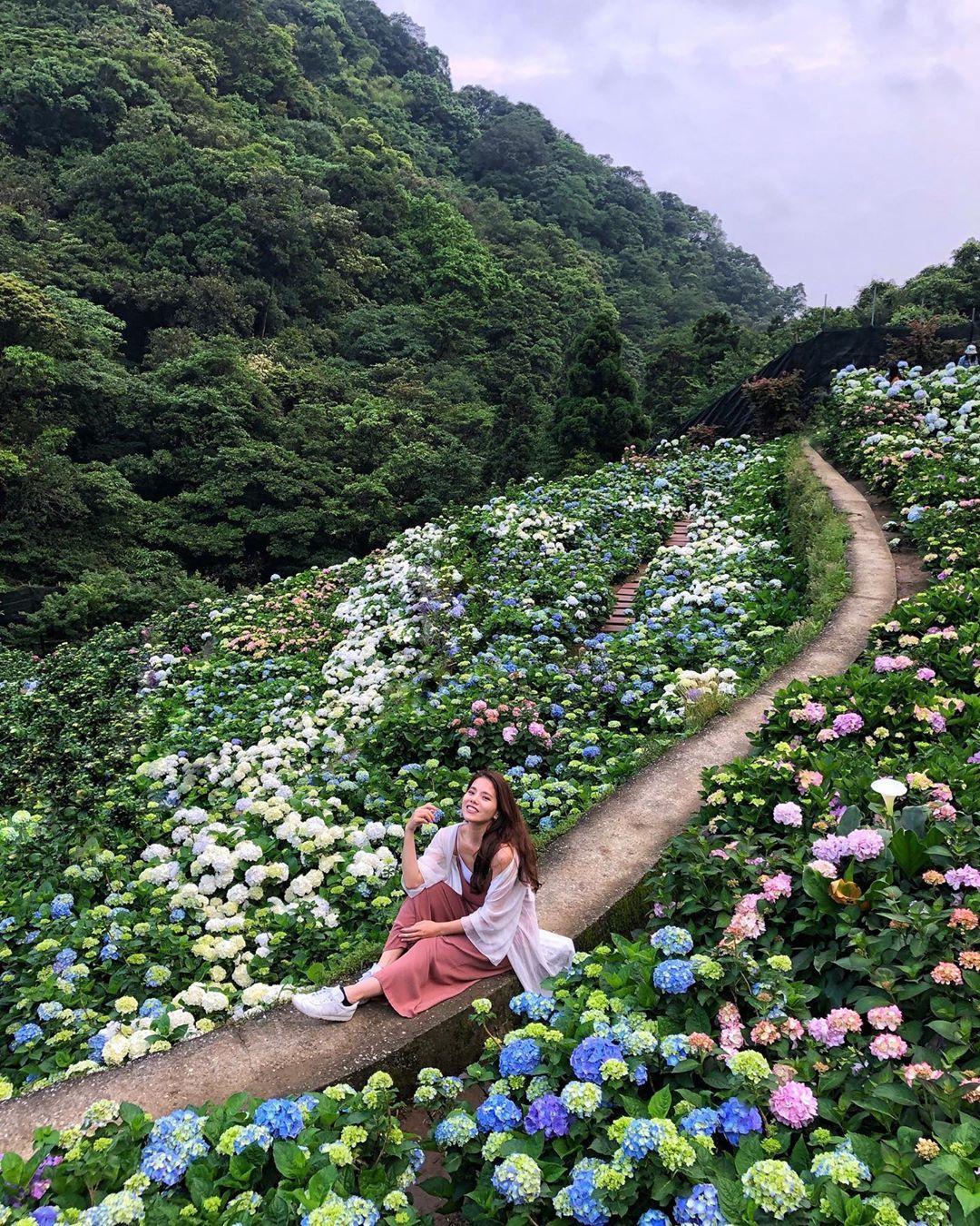 大梯田花卉生態農園@candiepard