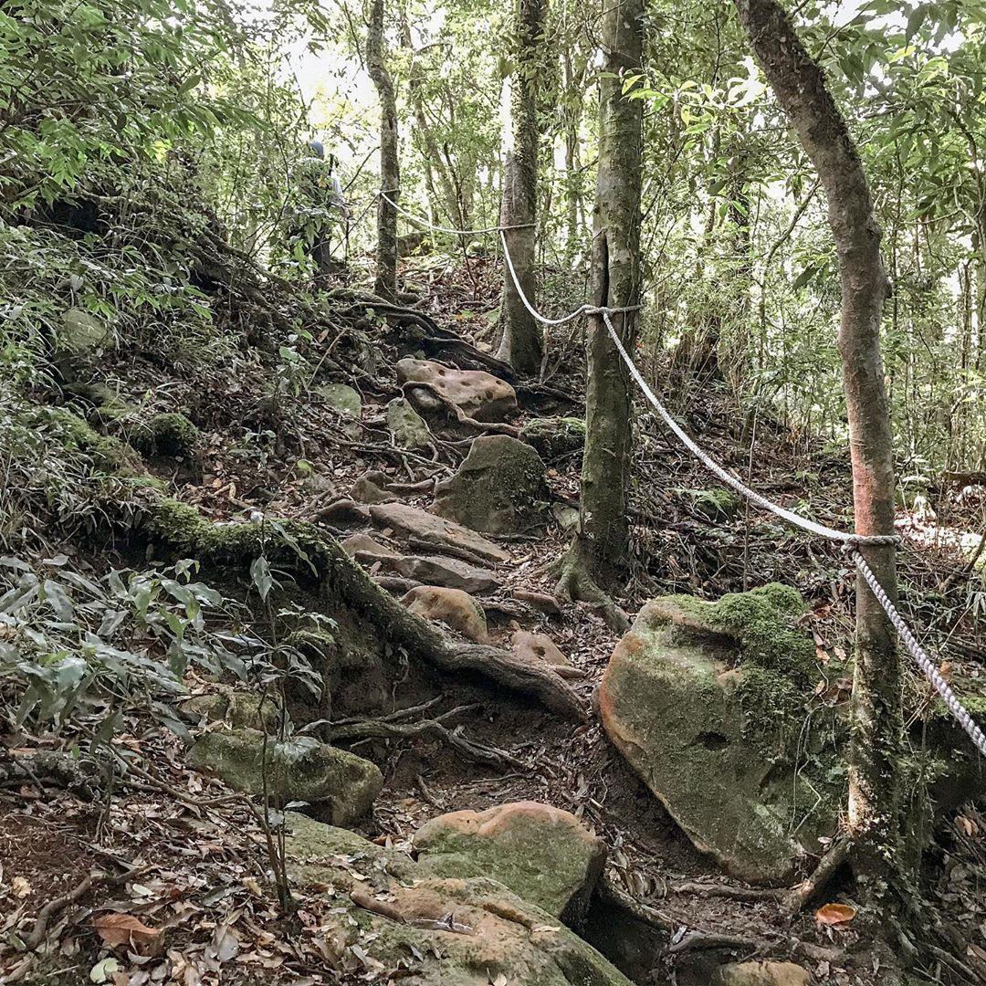 加里山登山步道1@pandalin1207