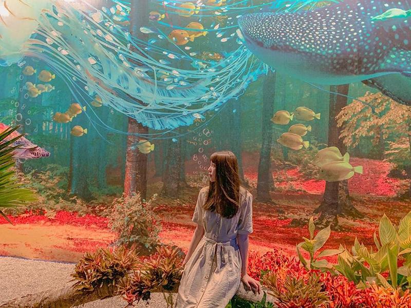 台中IG打卡新景點!一起漫步海底世界、探索奇幻森林!
