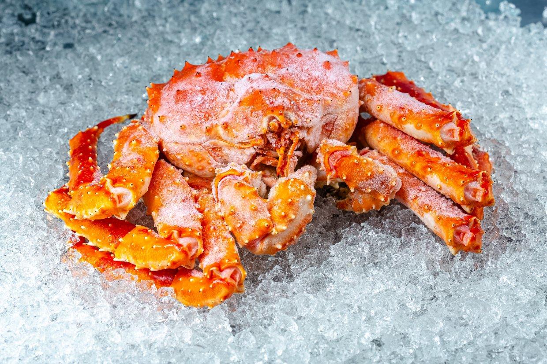 不能吃死蟹