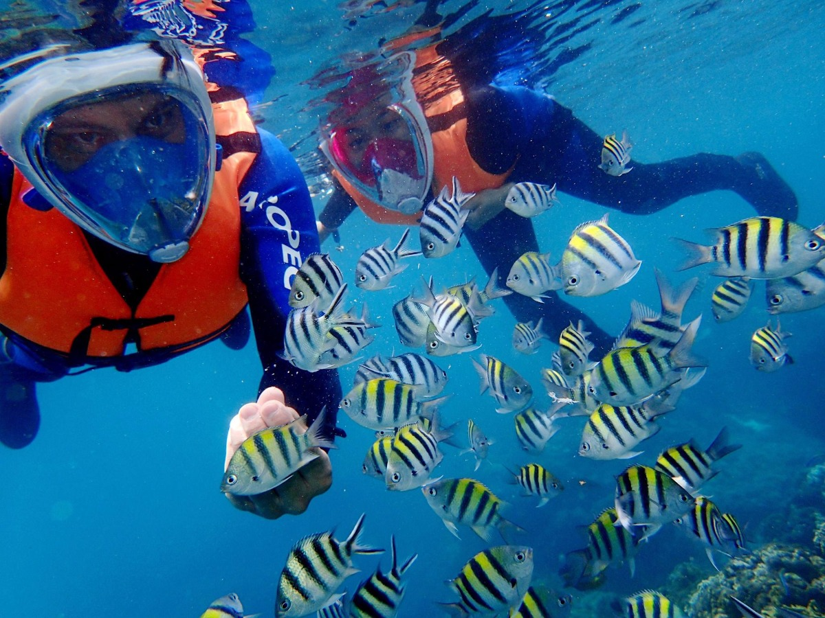 誰說冬天不能潛水?台灣全年無休的潛水點不藏私告訴你!