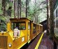 精選台灣10個國家森林遊樂區|放假就去森林遊樂區森活一下