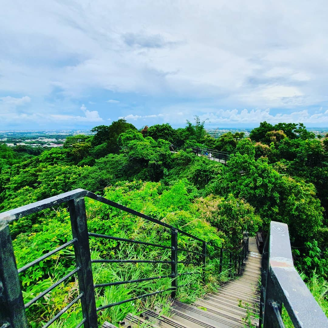 龍過脈森林步道1@daxiaoyuji Travel