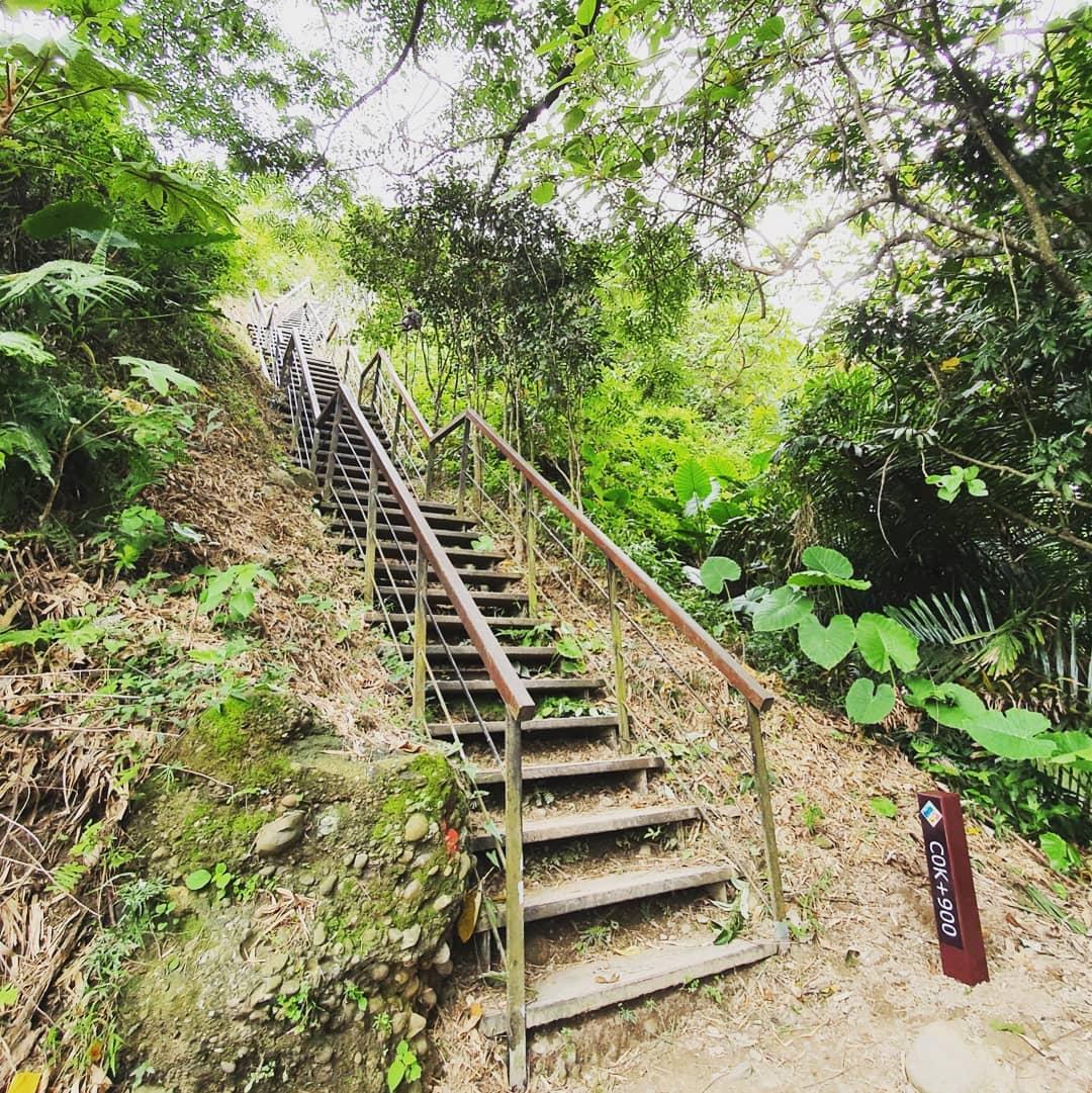 龍過脈森林步道@daxiaoyuji Travel