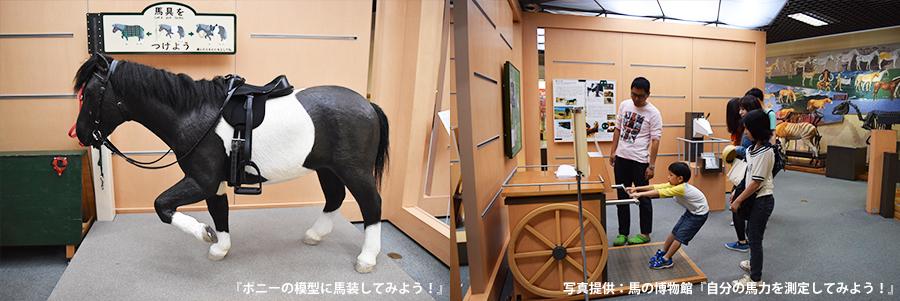 馬の博物館 体験コーナー