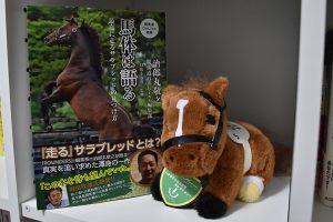 馬体は語る~最高に走るサラブレッドの見つけ方~
