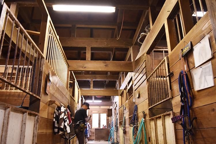 料亭の建物を活かした厩舎(内部)