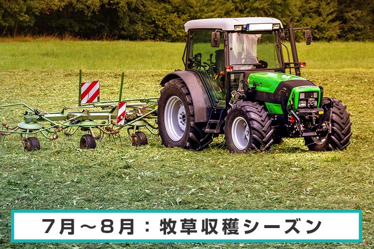 7月~8月:牧草収穫シーズン