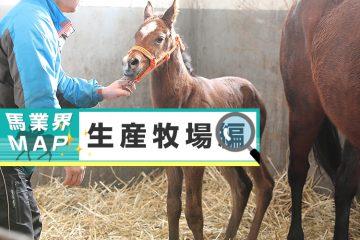 【馬業界MAP】生産牧場編