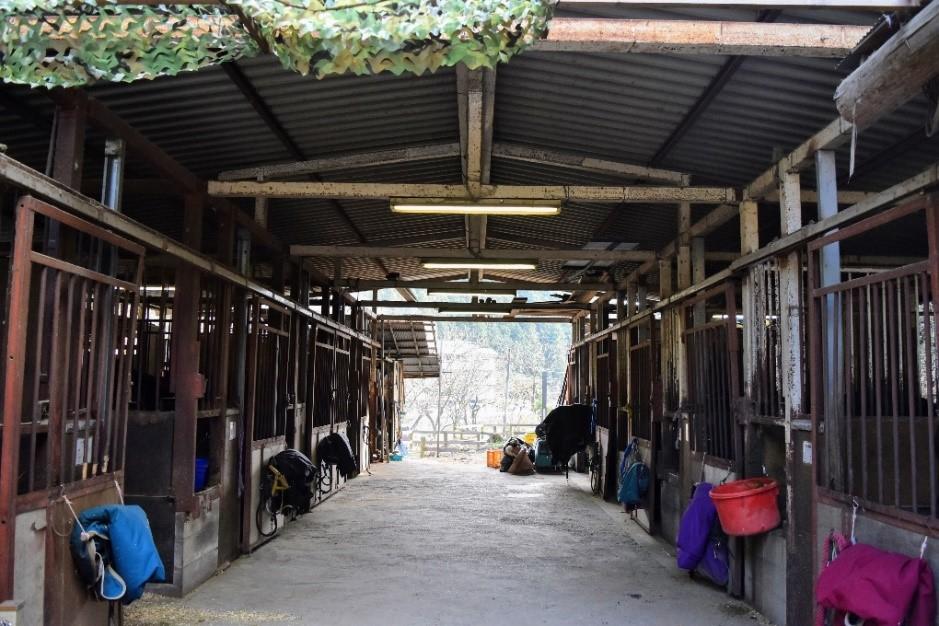 GOCOO HORSE VILLAGE 厩舎