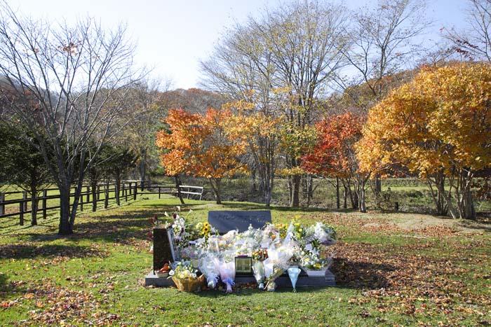 サイレンススズカの墓