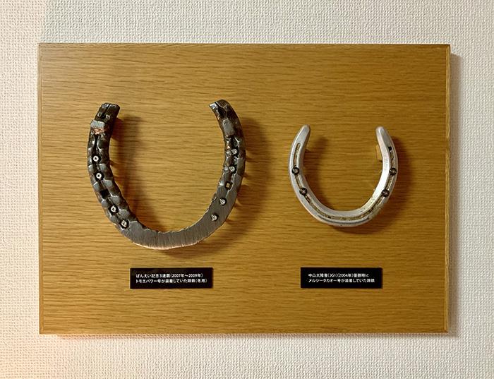 メルシ―タカオ―が中山大障害に勝利したとき履いていた蹄鉄