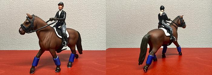 馬の映画のDVD