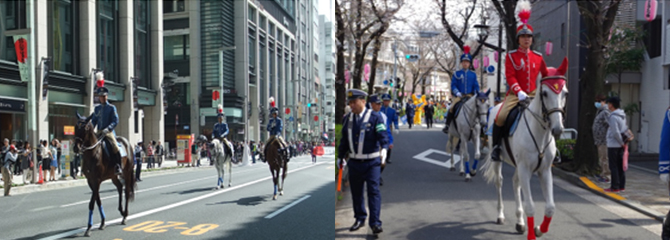 Pacalla編集部、警視庁騎馬隊について調べてみた!