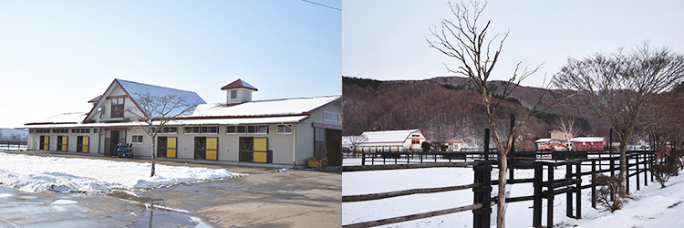 現在の杵臼牧場