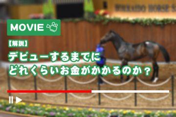 【解説】馬を購入してから、デビューするまでにどのくらいのお金がかかるのか?