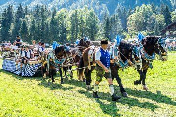 ドイツ馬の日『ロスターク』